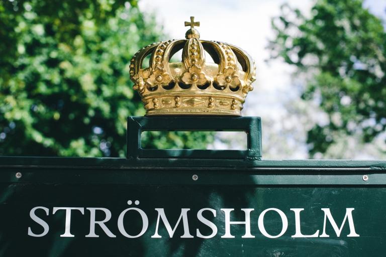 003-holgersson_stromsholmsslott_brollop